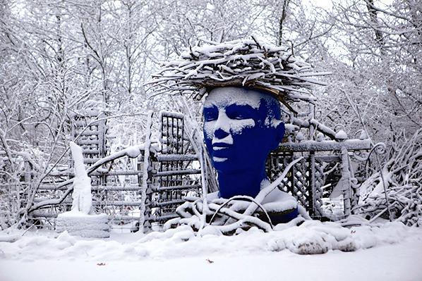 Blue Muse Winter 2015